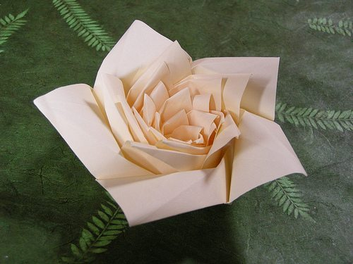Лотос оригами схема.
