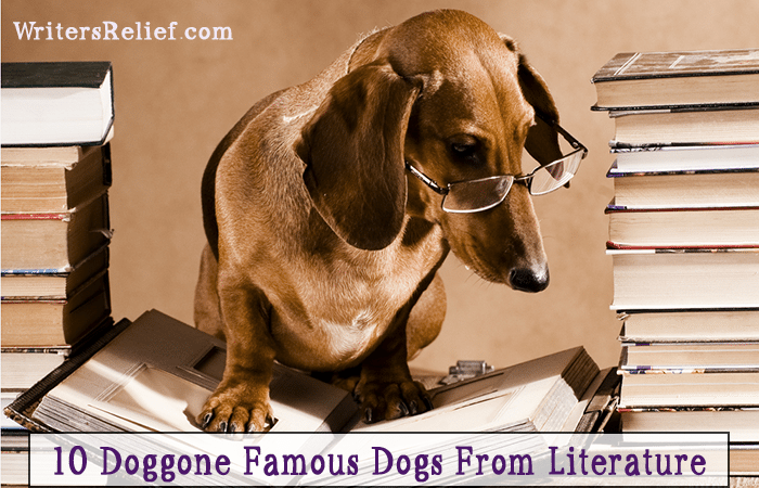 10 Doggone Famous Dogs From Literature @ JasonCarnrike com