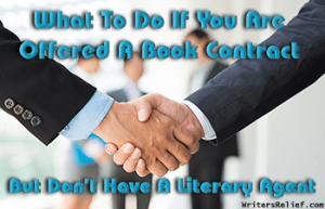 What To Do If You Are Offered A Book Contract FI