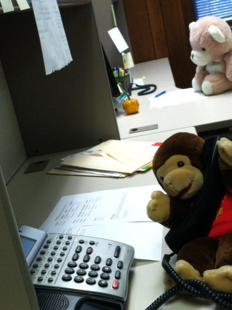Writer's Relief Stuffed Animal Staffers
