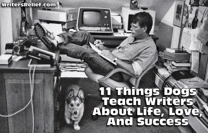 11 Things Dogs Teach Writers About Life, Love, And Success