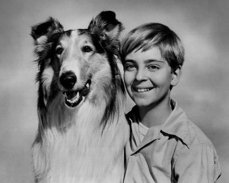 Lassie_Tommy_Rettig_Circa_1955