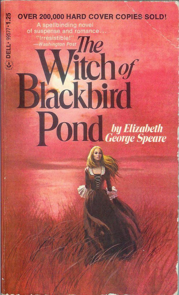witchblackbirdpondcover
